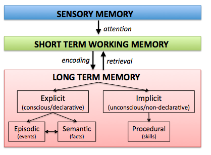 Emotional intelligence developing strong